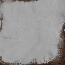 m2xl-narciso-gris-120x120-03